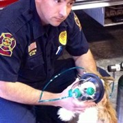 Magnolia UMC donates pet rescue masks to Central Fire Department